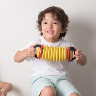 Concertina simple children's musical instrument