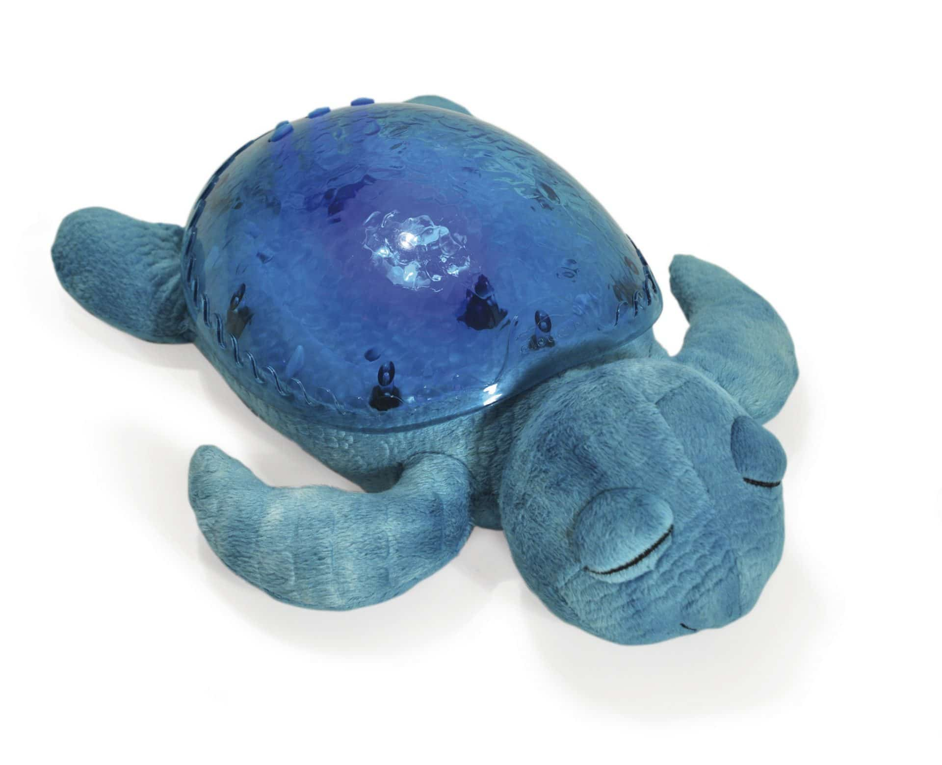 Plush turtle, hard shell, lights & sounds
