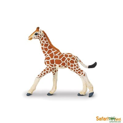 Reticulated giraffe calf for imaginative play