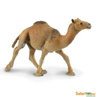 dromedary camel wild animal play figure