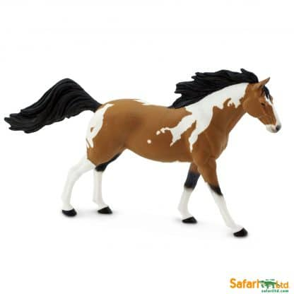 pinto mustang mare